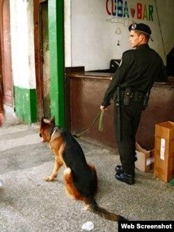Policía cubano patrulla calles de La Habana con un perro