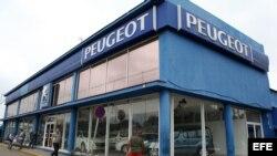 Vista de unos autos expuestos en un concesionario de Peugeot en La Habana