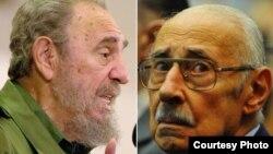 Castro y Videla, no tan extraños compañeros de cama