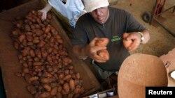 Un hombre vende papas en un mercado de La Habana. (REUTERS/Desmond Boylan-Archivo)