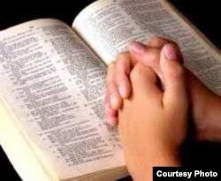El patiblanco lee la Biblia.