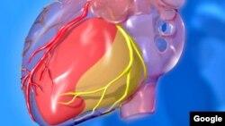La angina de pecho es la principal causa de muerte en Europa.