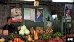 Un hombre vende vegetales en un mercado agrario junto a carteles con las imágenes de Fidel y Raúl Castro.