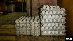 Cartones con huevos en una bodega cubana. (Archivo)