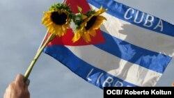 Gladiolos y la bandera cubana con la inscripción de Cuba Libre, en la manifestación en Miami en solidaridad con el Movimiento San Isidro.