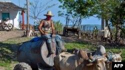 Escena captada el lunes en Bahía Honda, en la provincia de Artemisa (Yamil Lage/AFP).