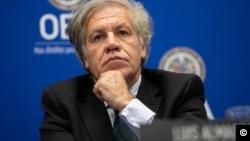 Dr. Luis Almagro, Secretario General de la OEA