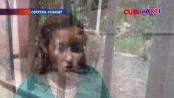 Maltrato animal en Cuba