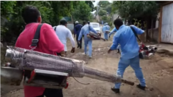 Peligro de proliferación de dengue por falta de medidas sanitarias