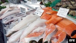 Filetes de salmón.