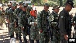 Las FARC son la guerrilla más antigua y numerosa de América, con casi 7.000 integrantes ahora concentrados en 26 puntos del país para dejar las armas. (Archivo)