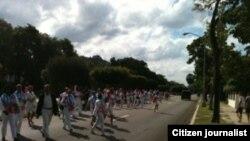 Reporta Cuba Damas de Blanco durante la Marcha 614 por 5ta Avenida hoy Foto Cortesía de Angel Egberto EScobedo