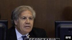 El Secretario General de la OEA , Luis Almagro, durante la presentación del informe de la CIDH sobre Nicaragua. Foto Archivo.