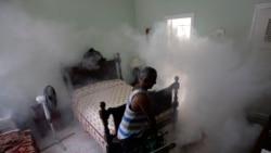 Prolifera el dengue en provincias centrales
