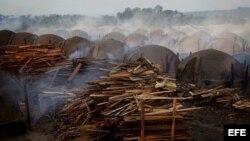 Carbonería en Brasil en el Amazonas