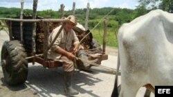 Los campesinos necesitan recursos y también poder de decisión para participar en el diseño de las políticas agrarias