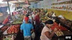 Mercado agropecuario en La Habana. Archivo.