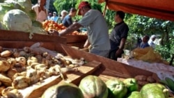 Campesinos hablan de las verdaderas trabas al desarrollo agrícola de Cuba