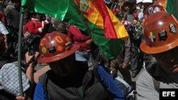 Diputada boliviana resta importancia a paro laboral