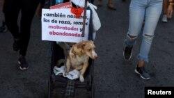 Marcha por los animales en La Habana el 7 de abril de 2019.
