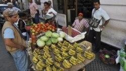 Activistas coinciden en que existe crisis alimentaria en Cuba