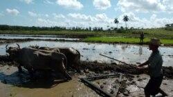 ¿Dónde está la ayuda de OXFAM?