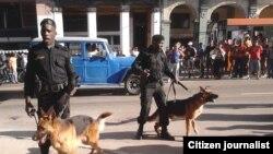 Perros sin bozales para reprimir a ciudadanos