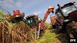 La industria azucarera en Cuba, un sector en crisis.