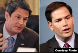 Los senadores Vitter y Rubio (i-d).