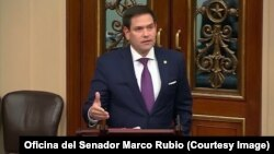 El senador cubanoamericano Marco Rubio.