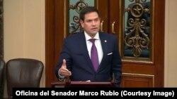 El senador republicano de origen cubano, Marco Rubio.