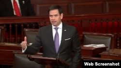 Senador republicano por la Florida Marco Rubio