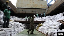 Un grupo de trabajadores desvela varios contenedores ocultos entre sacos de azúcar