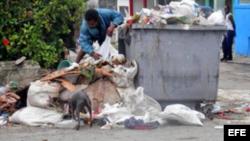 Recogida de basura en vertederos un riesgo epidemiológico
