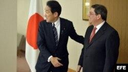 El canciller de Japón con su homólogo cubano, Bruno Rodriguez. EFE Archivo.