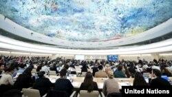 Consejo de Derechos Humanos de Naciones Unidas en Ginebra.