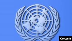 La ONU pide explicaciones al régimen cubano por la muerte de disidentes