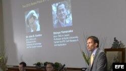 Thomas Perlmann (der) del instituto Karolinska anuncia la identidad de los ganadores del Premio Nobel de Medicina 2012, el británico John B. Gurdon (en la pantalla izq) y el japonés Shinya Yamanaka (en la pantalla der), en Estocolmo, Suecia, hoy lunes 8 d