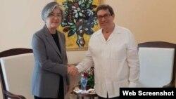 Ministros de Exteriores de Cuba y Corea del Sur se reúnen en La Habana.
