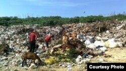 Basurero de Cienfuegos / Foto cortesía del bloguero Alejandro Tur