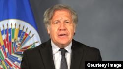 Luis Almagro, 21 de mayo de 2018 (captura de pantalla).