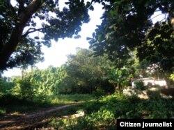 Reporta Cuba Foto Misael Aguilar Bosques