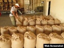 Planta Procesadora café Cumanayagua
