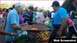 Cuentapropista vende frutas y viandas en un mercado.