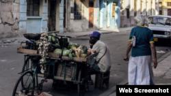 Vendedor de frutas. 14ymedio.com