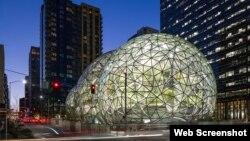 1800 Online con noticias sobre las Esferas de Amazon, y otros temas de interés