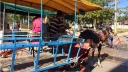 Cocheros en Banes, Holguín, dejan el paro al llegar a un acuerdo con las autoridades