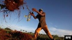 Autoridades de Songo La Maya prometen resolver demanda de campesinos