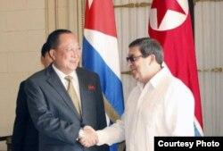 El canciller norcoreano, Ri-Yong Ho, se entrevistó el 21 de noviembre en La Habana con su homólogo cubano Bruno Rodríguez