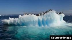 El aumento del nivel del mar cambiaría el perfil de regiones costeras de todo el mundo.